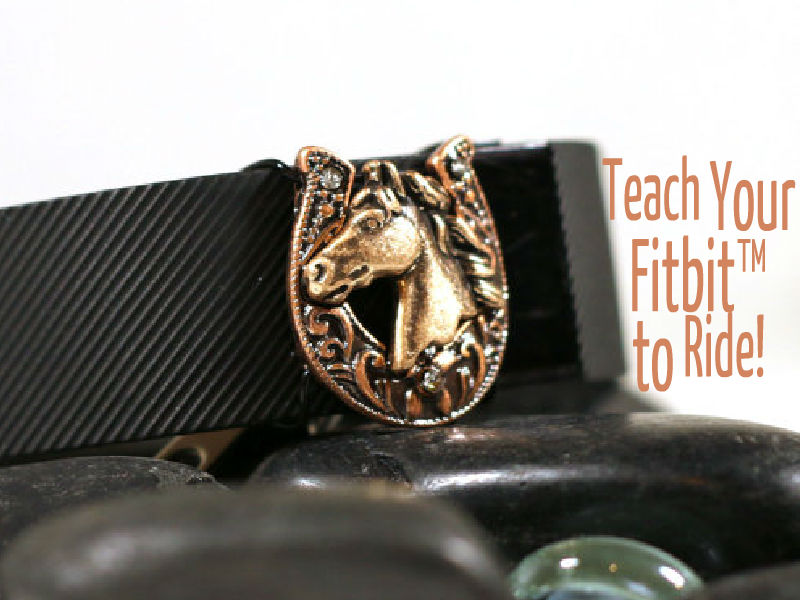 Teach Your Fitbit™ to Ride!
