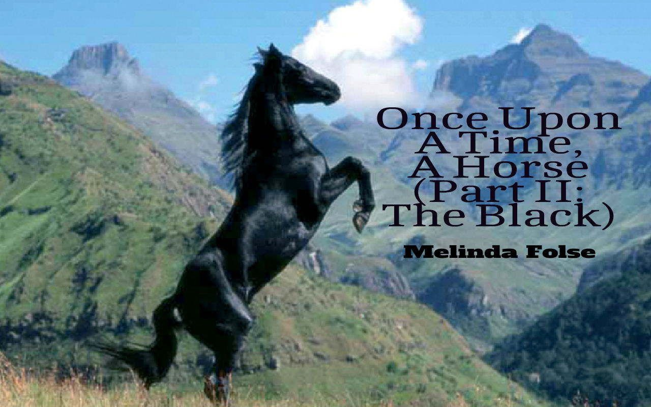 Once Upon A Time, A Horse (Part II: The Black)